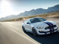 16-Shelby-GT350-10