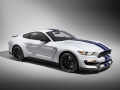 16-Shelby-GT350-14