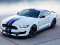 16-Shelby-GT350-25