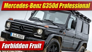 Forbidden Fruit: Mercedes-Benz G350d Professional