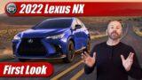 First Look: 2022 Lexus NX